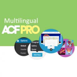 Advanced Custom Fields Multilingual