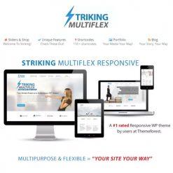Striking MultiFlex & Ecommerce Responsive WP Theme
