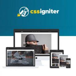 CSS Igniter Neto WooCommerceTheme
