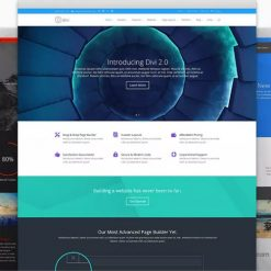 Elegant Themes Divi WordPress Theme