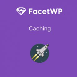 FacetWP - Caching