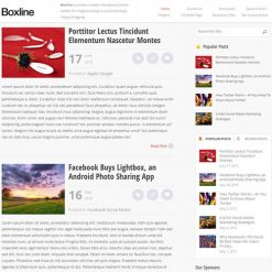 MyThemeShop Boxline WordPress Theme