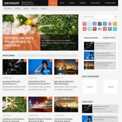 MyThemeShop Daynight WordPress Theme