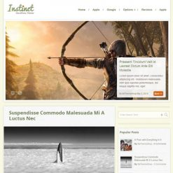 MyThemeShop Instinct WordPress Theme