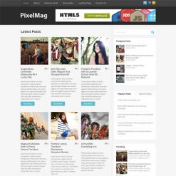 MyThemeShop Pixelmag WordPress Theme