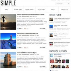 MyThemeShop Simple WordPress Theme