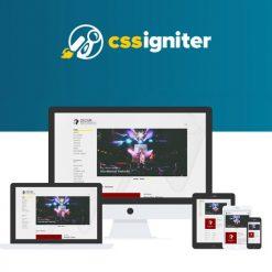 CSS Igniter Oxium WordPress Theme