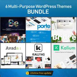 WordPress Plugin & Theme - Unlimited Premium Download
