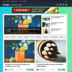 MyThemeShop Bridge WordPress Theme